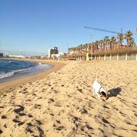 Foto tirada no(a) Praia da Barceloneta por Denis K. em 4/20/2013