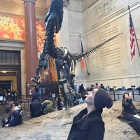 Photo prise au American Museum of Natural History Store par James G. le11/4/2017
