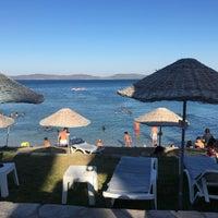 7/30/2017 tarihinde Boşnak Servet B.ziyaretçi tarafından Alya Beach Otel'de çekilen fotoğraf