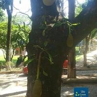 Photo taken at Sítio Green Peace - Pousada e Eventos by Sítio G. on 10/26/2016