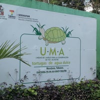 Photo taken at UMA de Tortugas Nacajuca by Miguel M. on 2/11/2014