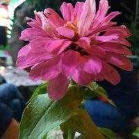 Photo taken at Erhan Market by Emre on 7/1/2016