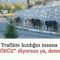 Photo taken at şekerimin yeri by Esen A. on 7/29/2016