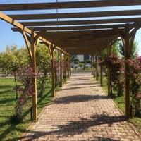 Photo taken at Güney Rotary Klübü Barış Parkı by Ahmet Kaytancı  on 7/1/2015
