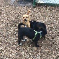 Photo taken at William S. Hart Park & Off-Leash Dog Park by Jackie H. on 8/9/2017