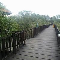 Photo taken at Ekowisata Mangrove by Happy N. on 11/15/2016