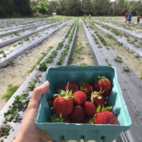 Photo taken at Pappy's Strawberry Patch by Samaneh on 2/25/2018