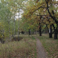 Photo taken at Ноксинский лес by Julia I. on 10/6/2013