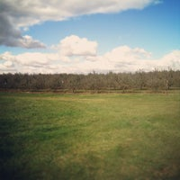 Curan's Apple Orchard