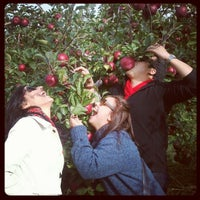 Photo taken at Minard Farms Apple Growers by Spanish Rob V. on 10/13/2012