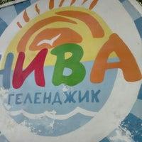 "Photo taken at ДОЛ ""Нива"" by Андрей К. on 7/28/2016"