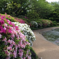 Photo taken at 江戸川平成庭園 つつじ山 by Hide H. on 5/4/2015