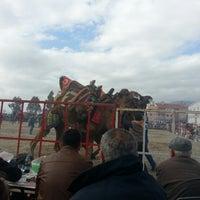 Photo taken at Buharkent Stadı by TC Başak G. on 1/25/2015