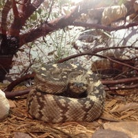 Photo taken at Sternberg Museum of Natural History by Media M. on 10/25/2012