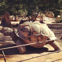Photo taken at Phoenix Zoo by Lauren G. on 11/2/2012