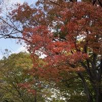 Photo taken at 藤田邸跡公園 by Takashi K. on 11/4/2016