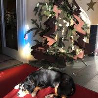 Photo taken at Hotel Adenia by David L. on 12/1/2016