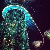 Photo taken at Gardens by the Bay by Bird B. on 7/22/2013