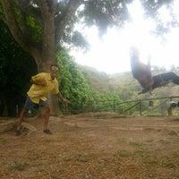 Photo taken at Parque Por La Paz by Pedro M. on 5/30/2014