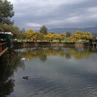 7/31/2014 tarihinde Mavis Ç.ziyaretçi tarafından Saklı Göl Restaurant & Nature Club'de çekilen fotoğraf