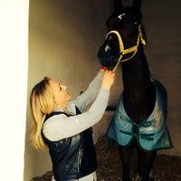 4/10/2014 tarihinde Cevriye K.ziyaretçi tarafından Yarış Atları Hastanesi'de çekilen fotoğraf