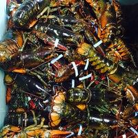 Photo taken at Trenton Bridge Lobster Pound by Pete C. on 10/4/2014