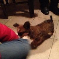 Photo taken at Pizzeria Lana by b_highdi on 12/3/2012