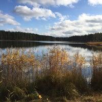 Photo taken at Ольховское озеро by Victoria M. on 10/16/2016