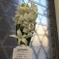 1/7/2017に久保田 健.が美容室プーアプーで撮った写真