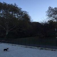 11/8/2015에 Elena G.님이 Owls Head Dog Park에서 찍은 사진