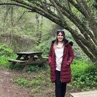 4/8/2018 tarihinde Şule Ö.ziyaretçi tarafından Şelale Park'de çekilen fotoğraf