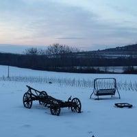 Photo taken at Tokaj Macik Winery by Giuseppe C. on 2/1/2014
