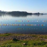 1/11/2015 tarihinde Hamide D.ziyaretçi tarafından Adnan Menderes Göl Kenarı'de çekilen fotoğraf