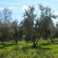 Photo taken at Özdoğan Çiftlik Evi by Emine S. on 3/12/2014