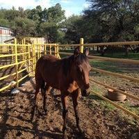Photo taken at Rancho El Monte de Sepulveda by J A S. on 6/29/2013