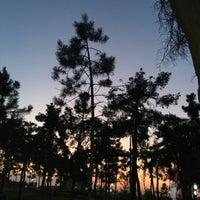 Photo taken at Gebze Çamlık Parkı by esra u. on 7/13/2017