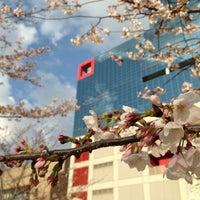 Photo taken at Ogimachi Park by yokobomb on 3/28/2013