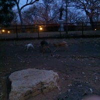 Photo taken at Loring Park Off-Leash Recreation Area by Alan on 10/22/2012