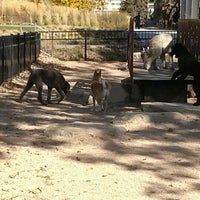Photo taken at Loring Park Off-Leash Recreation Area by Alan on 10/14/2012