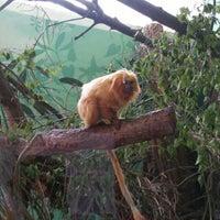 Photo taken at Ogród Zoologiczny by Darek Z. on 4/30/2016