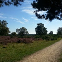 Photo taken at Zuiderheide by Claudia R. on 9/9/2012