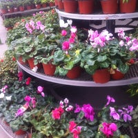 Photo taken at The Home Depot by Pau B. on 10/7/2013