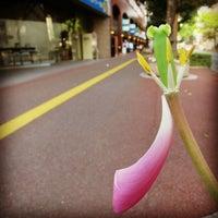 Photo taken at JT 福岡支店 by 聖 on 4/13/2013