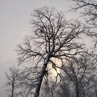 Photo taken at Brevoort Park by David M. on 12/29/2012