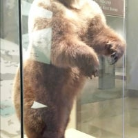 Photo taken at The Kenneth E. Behring Family Hall of Mammals by Mon G. on 7/9/2014