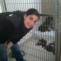 Photo taken at Northeast Animal Shelter by Emily K. on 11/10/2012