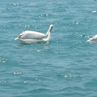 Photo taken at marina plajı by Ayla B. on 7/27/2014