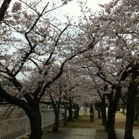 Photo taken at Suma Rikyu Park by chibino T. on 3/31/2013