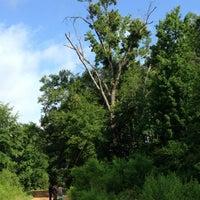 Photo taken at Big Cypress Bayou near Caddo Lake by Terry K. on 6/18/2014