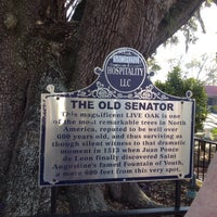 Photo taken at The Old Senator Tree by Beth M. on 11/17/2016